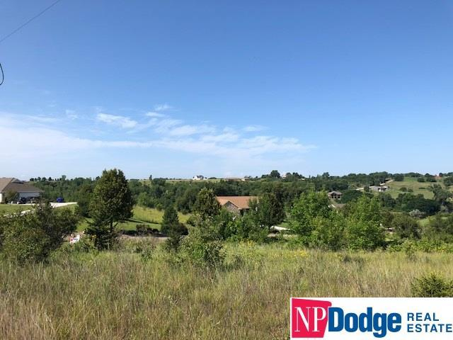 Lot 2 Crystal Lake Drive, Blair, NE 68008 (MLS #21813789) :: The Briley Team