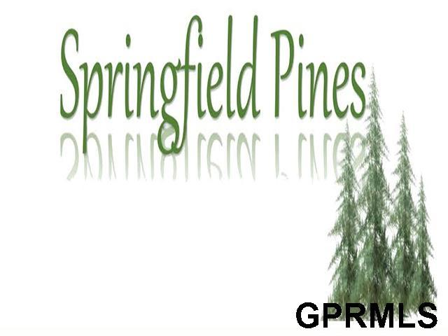 910 Elm Circle, Springfield, NE 60859 (MLS #21903476) :: Complete Real Estate Group