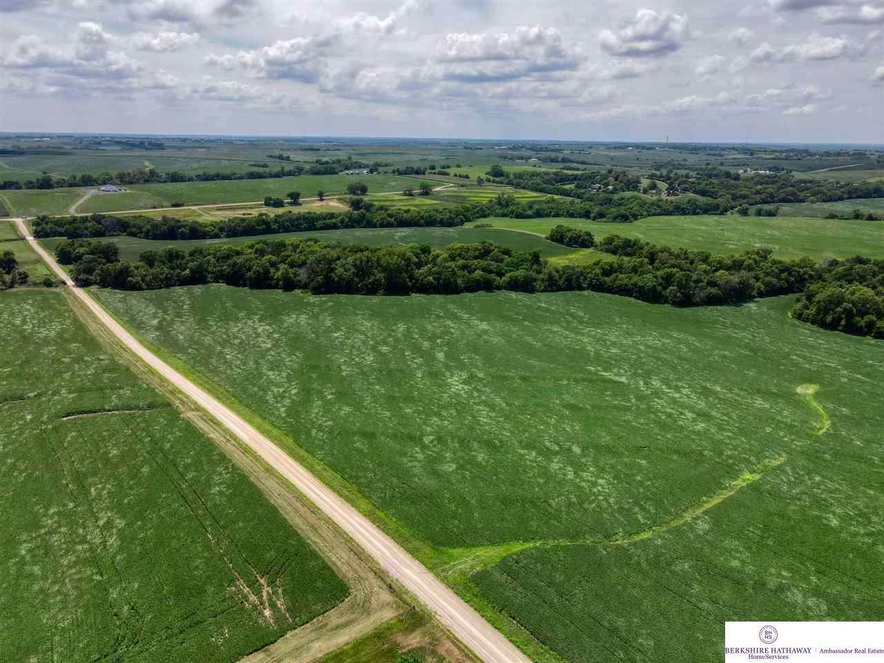 31.85 AC Abcd Acres - Photo 1