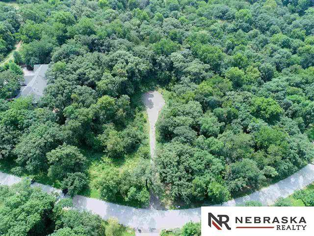 Ravens Nest Lot 10R, Louisville, NE 68037 (MLS #22101394) :: Dodge County Realty Group
