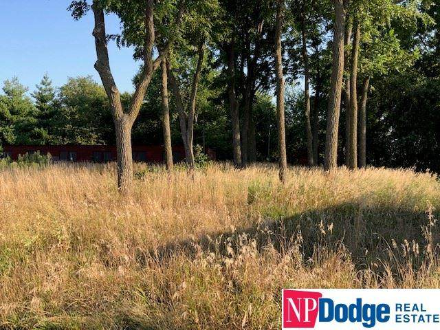 4.95 acres N 10 Street, Blair, NE 68008 (MLS #22111376) :: kwELITE
