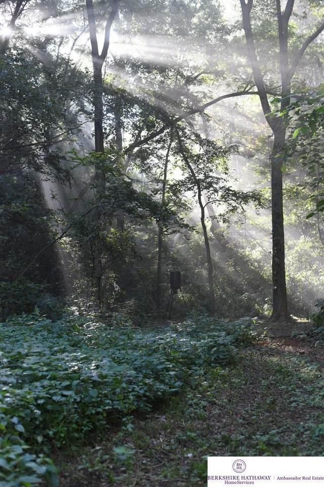 2156 Loess Hills Trail, Missouri Valley, IA 51555 (MLS #22113615) :: Don Peterson & Associates