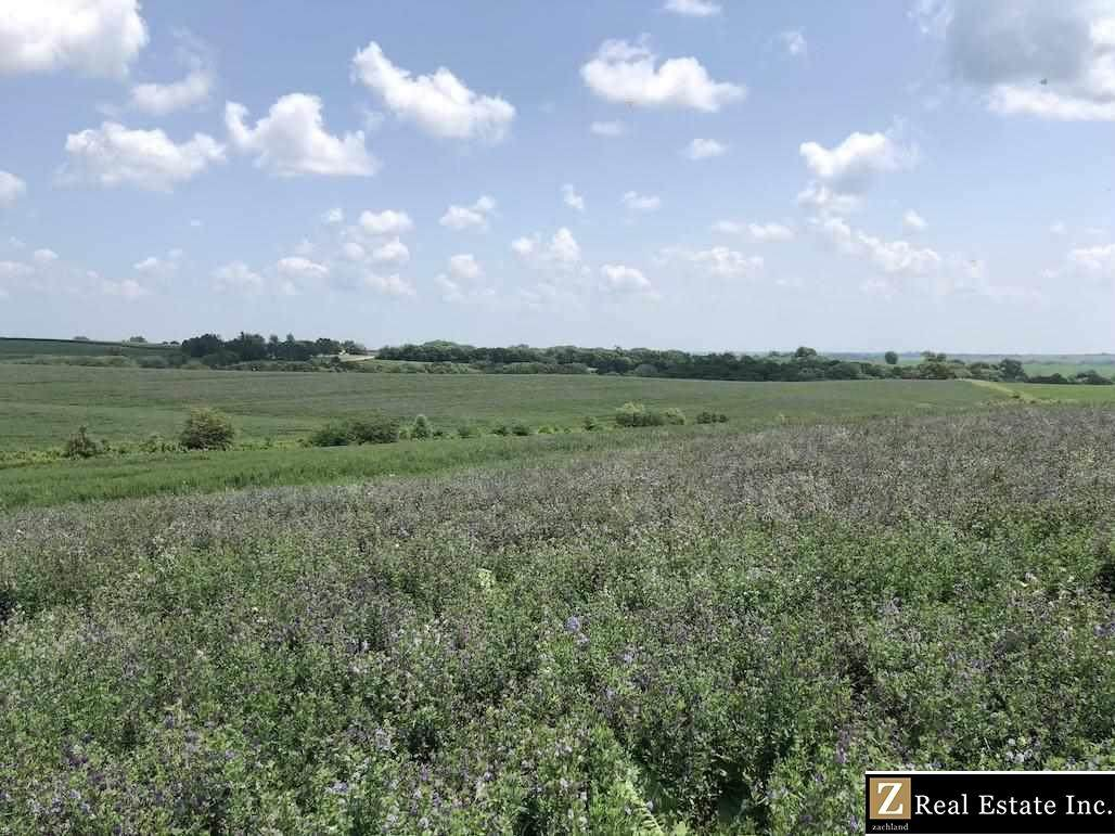 Saunders County Acreage 3 County Road - Photo 1