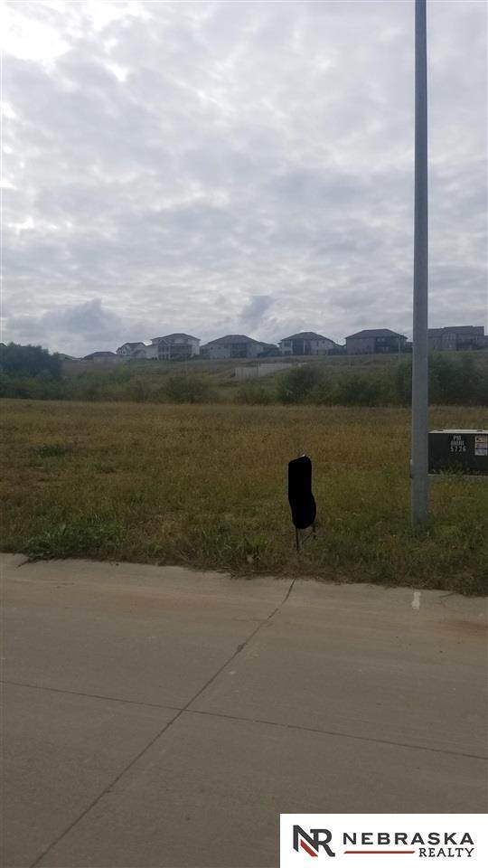 10114 S 103rd Street, Papillion, NE 68046 (MLS #22124102) :: Catalyst Real Estate Group
