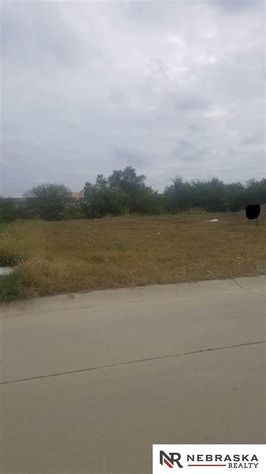 11157 Sunburst Drive, Papillion, NE 68046 (MLS #22124110) :: Catalyst Real Estate Group