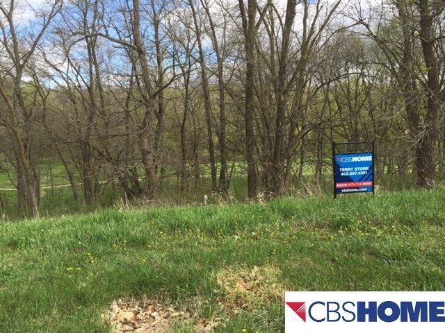 23722 P Street, Omaha, NE 68022 (MLS #21706127) :: Omaha's Elite Real Estate Group