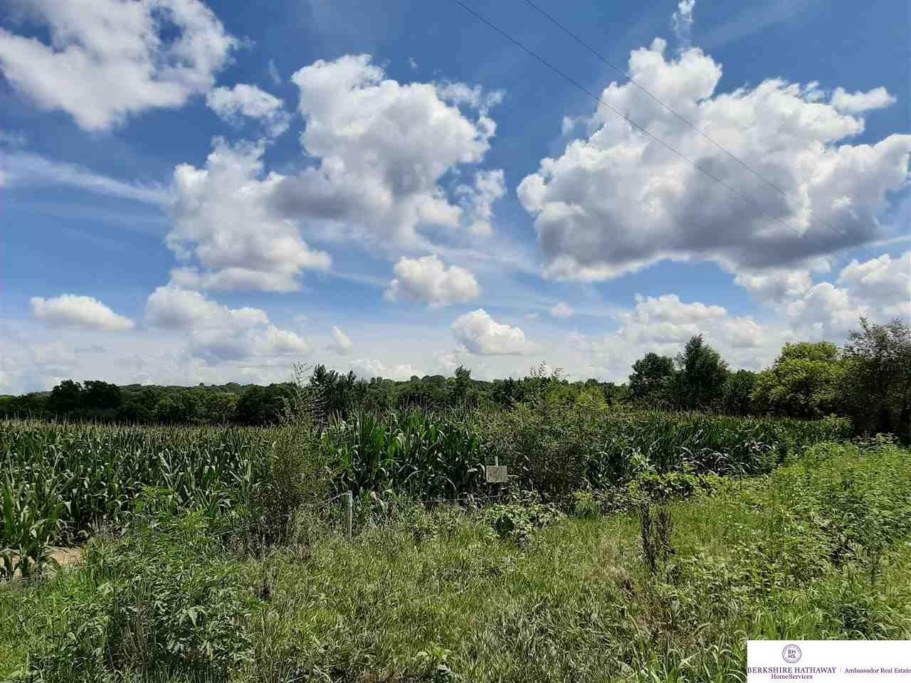 P39 92.61 Acres - Photo 1