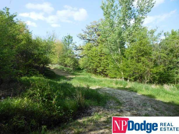6251 G Road, Nebraska City, NE 68410 (MLS #22023358) :: Dodge County Realty Group