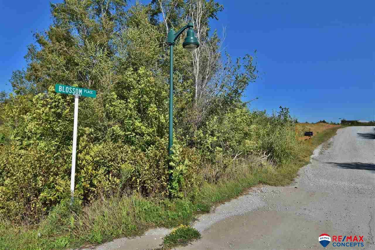 2420 Woodsey Lane - Photo 1