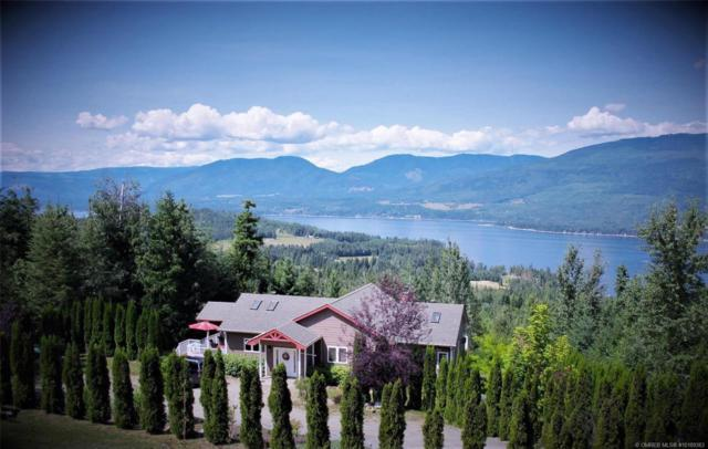 5087 Ridge Road,, Eagle Bay, BC V0E 1T0 (MLS #10189383) :: Walker Real Estate Group