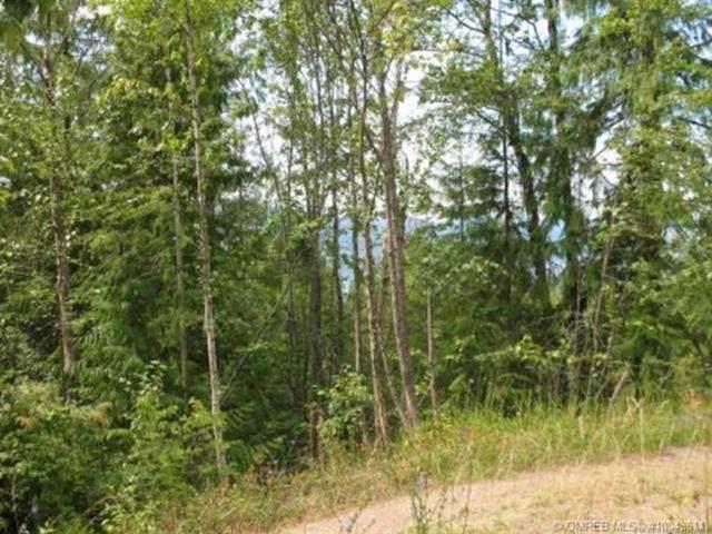 Lot 377 Anglemont Way,, Anglemont, BC V0E 1M8 (MLS #10191781) :: Walker Real Estate Group