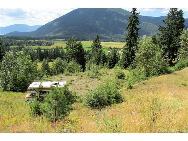 Lot 2 Sun Ridge Place, Tappen, BC V0E 2X0 (MLS #10138970) :: Walker Real Estate