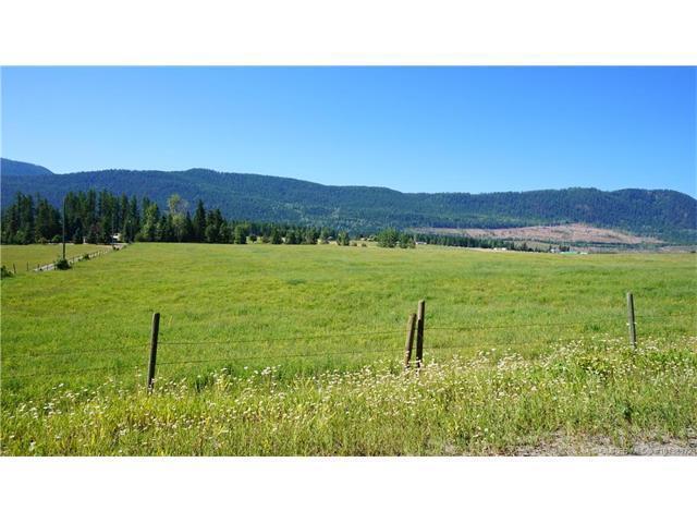 Lot 195 Mitchell Road, Cherryville, BC V0E 2G3 (MLS #10138972) :: Walker Real Estate