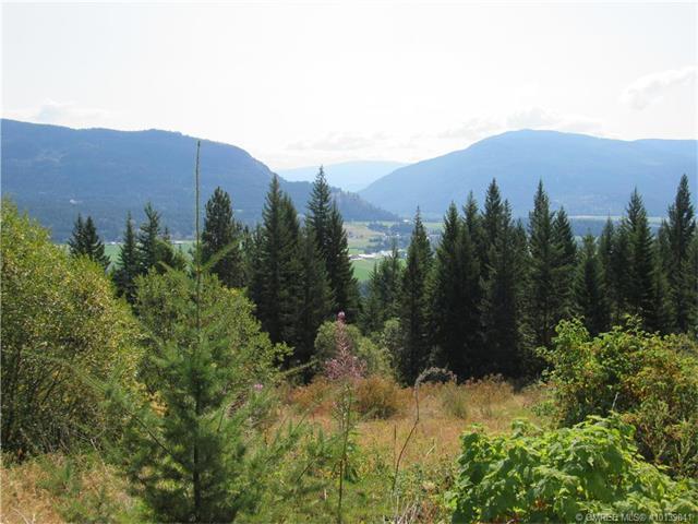 Lot 9 - 265 Terry Road Lot 9, Enderby, BC V0E 1V3 (MLS #10139041) :: Walker Real Estate