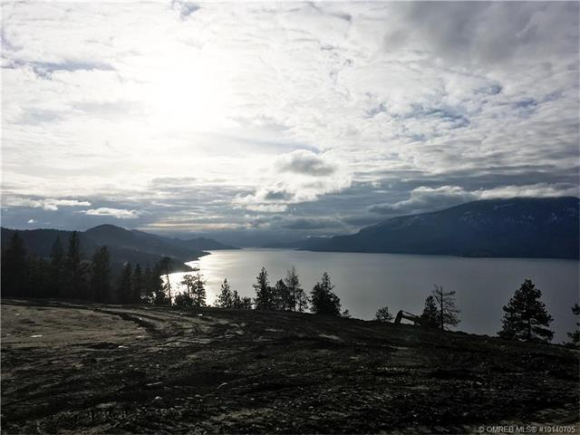 78 Benchlands Road, Lake Country, BC V4V 2T4 (MLS #10140705) :: Shuswap Real Estate by Stacey Leigh