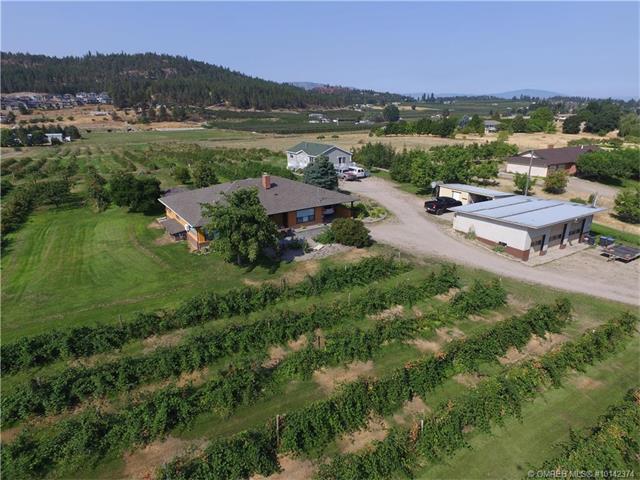 9850 Read Road, Lake Country, BC V4V 1M2 (MLS #10142374) :: Walker Real Estate