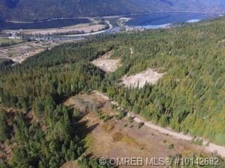 47 East Poirier Road East, Mara Lake, BC V0E 2K0 (MLS #10142682) :: Shuswap Real Estate by Stacey Leigh
