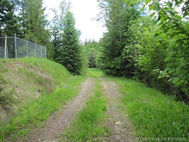 4440A Squilax Anglemont Road,, Scotch Creek, BC V0E 1M6 (MLS #10145620) :: Walker Real Estate