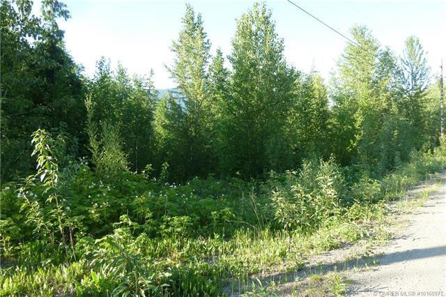 Lot 33 Ridge Road,, Eagle Bay, BC V0E 1T0 (MLS #10160977) :: Walker Real Estate Group