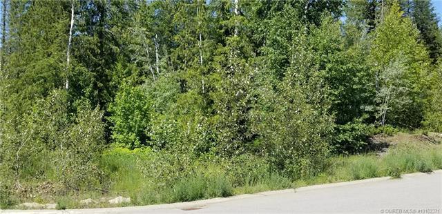1590 Mason Road,, Revelstoke, BC V0E 2S0 (MLS #10162371) :: Walker Real Estate