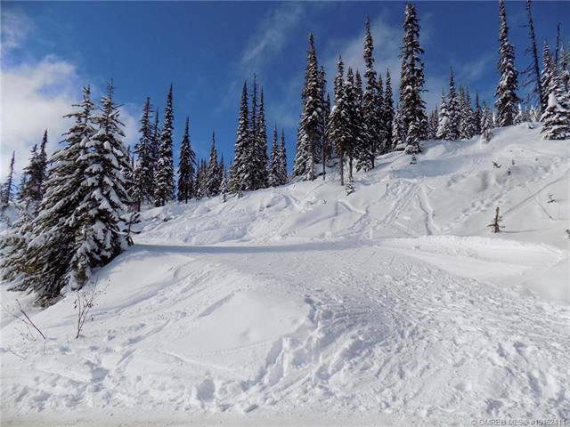 #23 5940 Snow Pines Way,, Big White, BC V1P 1P3 (MLS #10162411) :: Walker Real Estate