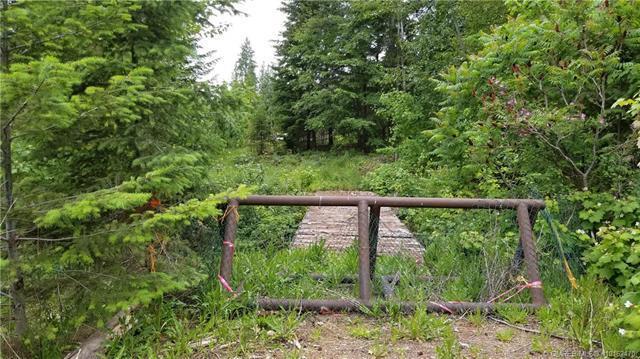 2639 Airstrip Road,, Anglemont, BC V0E 1M8 (MLS #10162470) :: Walker Real Estate