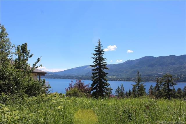 B View Road,, Lee Creek, BC V0E 1M4 (MLS #10162546) :: Walker Real Estate