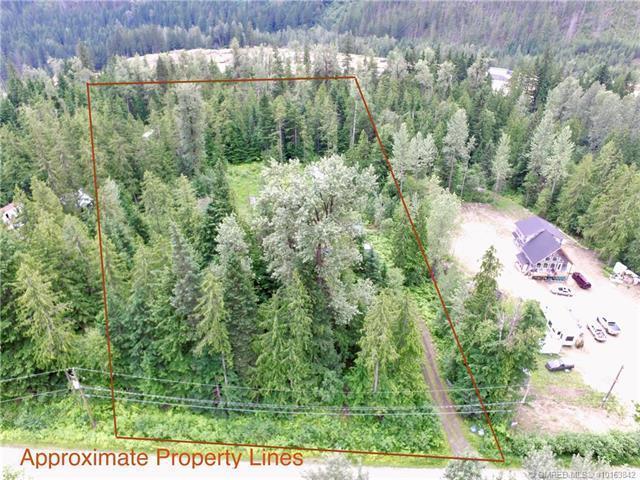 4 Loschinski Road,, Revelstoke, BC V0E 2S0 (MLS #10163842) :: Walker Real Estate