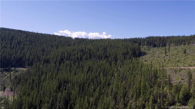 1665 Dixon Dam Road,, Vernon, BC V1B 3J9 (MLS #10164193) :: Walker Real Estate