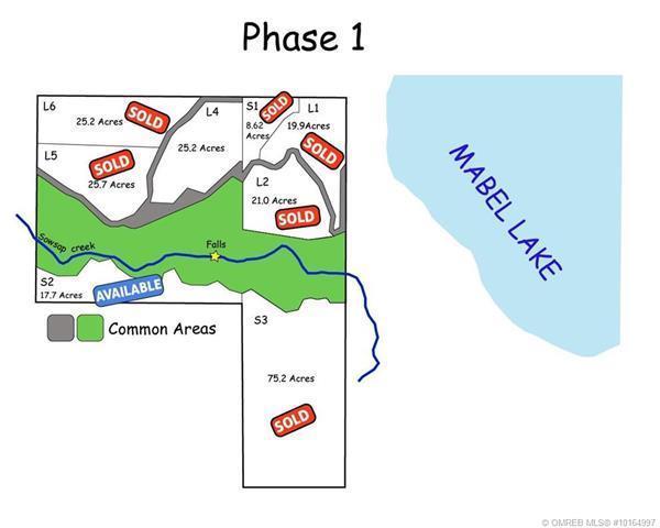 Lot S2 Stringer Road,, Lumby, BC V0E 2G4 (MLS #10164997) :: Walker Real Estate Group