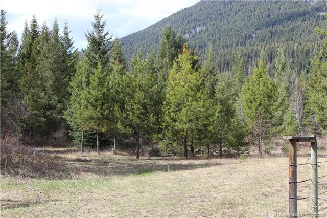 580 North Fork Road,, Cherryville, BC V0E 2G3 (MLS #10168386) :: Walker Real Estate Group