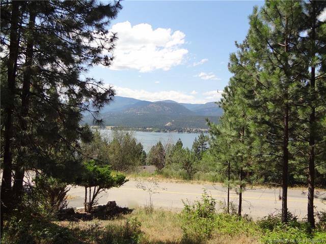 9113 Tronson Road,, Vernon, BC V1H 1E2 (MLS #10168531) :: Walker Real Estate Group