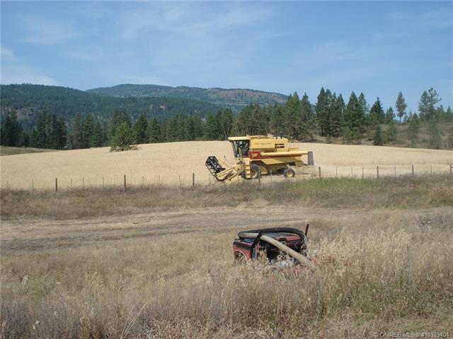 3466 Salmon River Road,, Salmon Arm, BC V1E 3J1 (MLS #10169404) :: Walker Real Estate Group