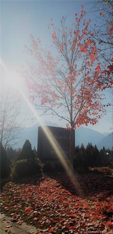 #1318 2950 Camozzi Road,, Revelstoke, BC V0E 2S1 (MLS #10171385) :: Walker Real Estate Group