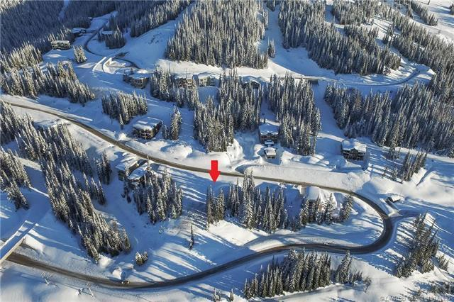 9877 Cathedral Drive,, Silver Star, BC V1B 3M1 (MLS #10171850) :: Walker Real Estate Group