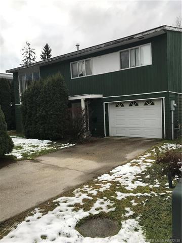 1101 Cottonwood Street,, Revelstoke, BC V0E 2S0 (MLS #10172138) :: Walker Real Estate Group