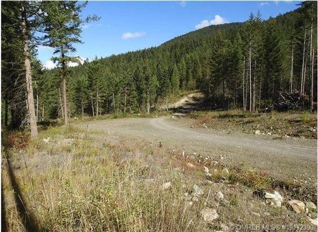 3293 Upper Mcleod Road,, Armstrong, BC V0E 1B8 (MLS #10172390) :: Walker Real Estate Group