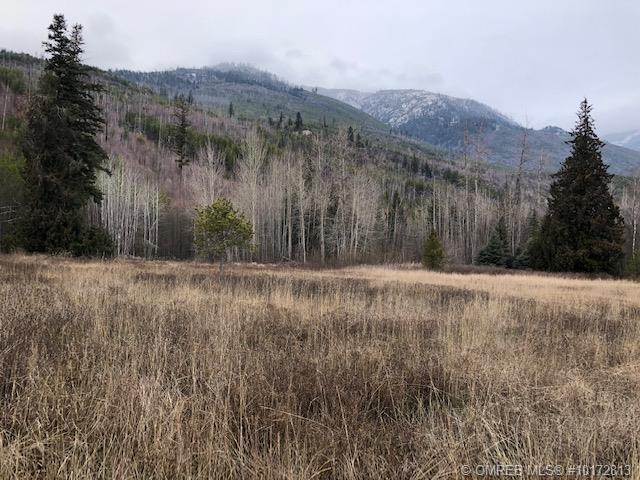 Lot 1 Krick Road,, Salmon Arm, BC V1E 3C6 (MLS #10172813) :: Walker Real Estate Group