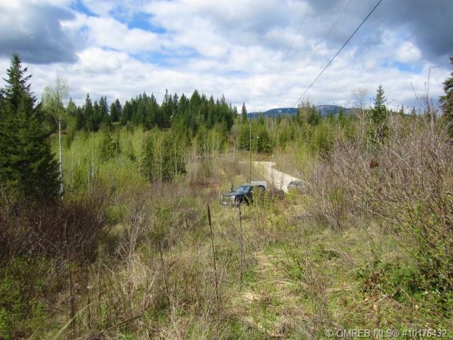 45 Furlong Road,, Enderby, BC V0E 1Y0 (MLS #10176432) :: Walker Real Estate Group