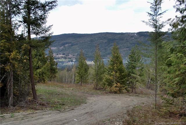 6600 Park Hill Road, NE, Salmon Arm, BC V0E 1K0 (MLS #10180775) :: Walker Real Estate Group