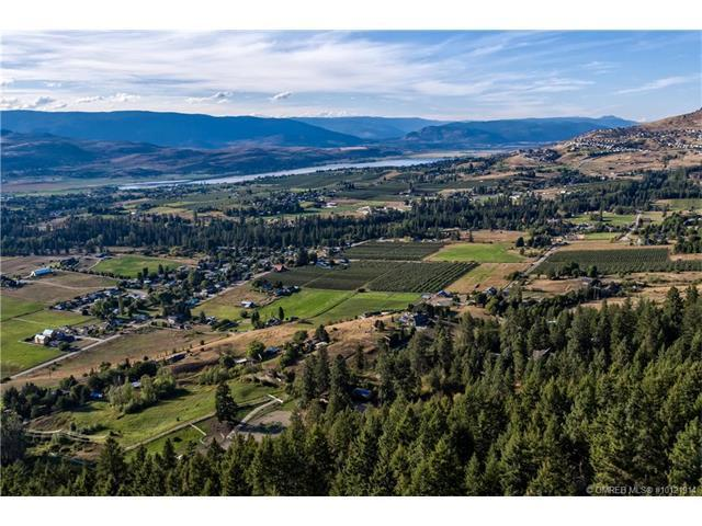 Lot 9 Boss Creek Road,, Vernon, BC V1B 4G5 (MLS #10121914) :: Walker Real Estate Group