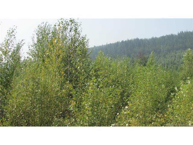 150Acres Sugar Lake-Sihlis Road,, Vernon, BC V1H 2B1 (MLS #10139911) :: Walker Real Estate
