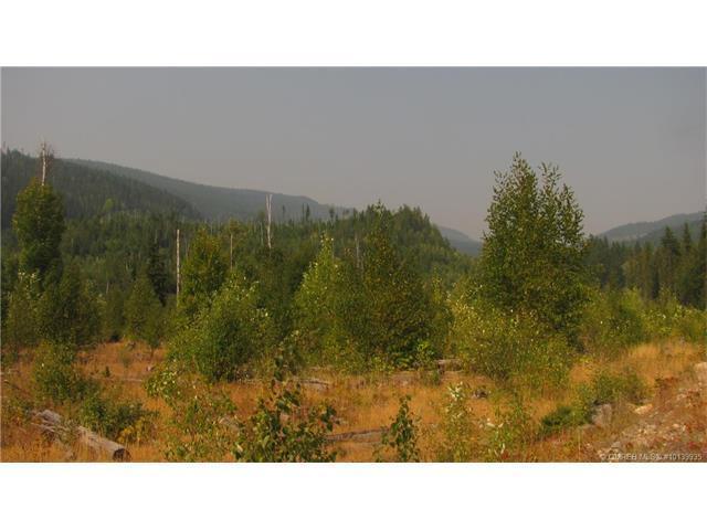1038 Sugar Lake-Sihlis Road,, Vernon, BC V1H 2B1 (MLS #10139935) :: Walker Real Estate