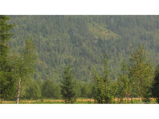 200 Acres Sugar Lake Road,, Cherryville, BC V0E 2G3 (MLS #10141125) :: Walker Real Estate
