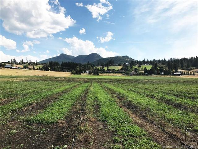 Lot 6 Springfield Road,, Coldstream, BC V1B 3E5 (MLS #10141864) :: Walker Real Estate