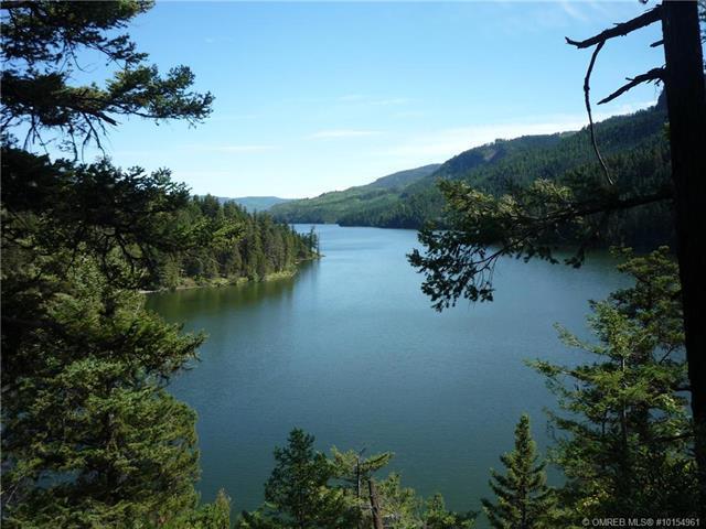 6396 Pinaus Lake Road,, Rural Vernon, BC V0E 1N0 (MLS #10154961) :: Walker Real Estate