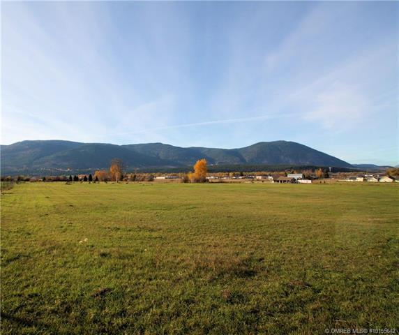 1741 10 Street, SW, Salmon Arm, BC V1E 1V3 (MLS #10155642) :: Walker Real Estate