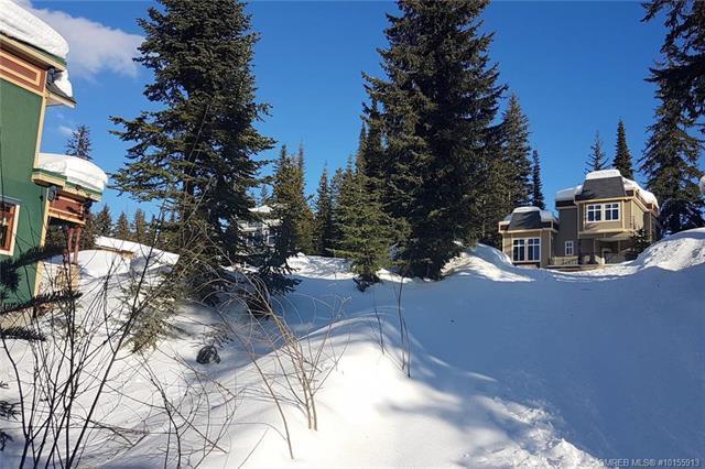 500 Monashee Road,, Silver Star, BC V1B 3M1 (MLS #10155913) :: Walker Real Estate