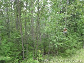 Lot 51 Estate Drive,, Anglemont, BC V0E 1A0 (MLS #10156249) :: Walker Real Estate