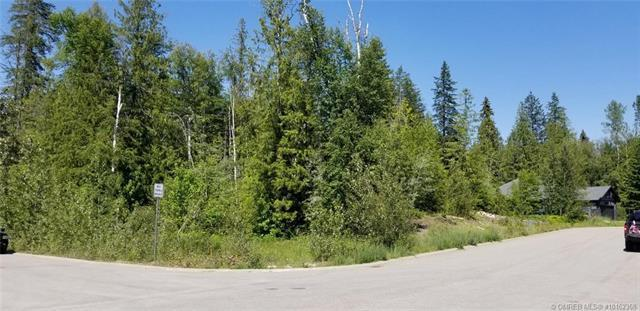 1580 Mason Road,, Revelstoke, BC V0E 2S0 (MLS #10162368) :: Walker Real Estate